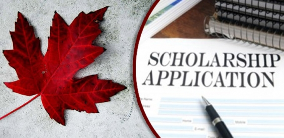 How to get scholarship to study in canada