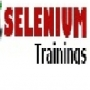 Best Selenium SAP Testing Online Training in Hyderabad