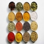 Agriculture Oil Seeds Suppliers