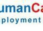 Branch Head/ Operations Manager