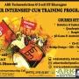 Certified Summer Internship Cum Training Program 2015 By ARK TECHNOSOLUTIONS & E-CELL IIT