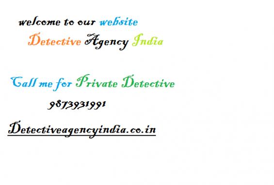Detective agency india new delhi