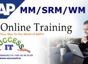 Best sap online/class room training institute in hyderabad