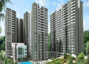 Buy apartment in sobha green acres