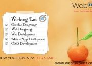 Affordable Web Development India | Web Designing Company India | Web Design Client Testimo