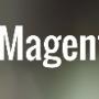 Magento Store Developer India