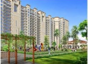 2/3 BHK Apartments for sale in Noida Extension by Casagreen 1 - 9650797111