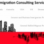 Business and Investors Visa Consultant