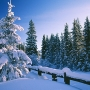 ManaliHoliday.In offers Manali tour in summer at Rs 15,500 Per Couple