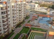 2BHK fully furnihed  Flat rent in Concorde Livingston