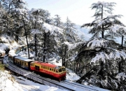 Book An Unforgettable Shimla Tour Package Online