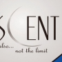 Buy office space at The Crescent noida extension