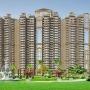 Ajnara Ambrosia Noida Sector 118, 2/3 bhk flats in Noida