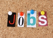 Virtual Assistant for Internet Marketing - Delhi