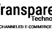 Best Ecommerce Development Company Bhubaneswar