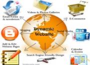Dynamic website designing in USA