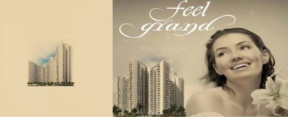 Ild grand centra sector 37c gurgaon, property in gurgaon
