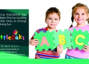 Join toddlers at little oaks play schools in moulali hyderabad