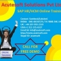 SAP HR Online Training | Online SAP HR Course