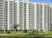 Apartments  2/3/4 bhk 1050 sq.ft in noida 119 sector by the aranya