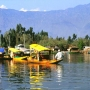 Kashmir Holiday & Honeymoon tour package at 8500 for 03N/04D