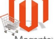 Magento Custom Development services - silicon info