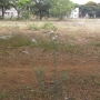 cmda residential land for sale in chennai vadaperumpakkam near donbosco school