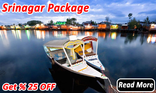 Srinagar package | srinagar holiday package