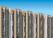 2 BHK Apartments in Amrapali Bollywood Towers at Noida Extension