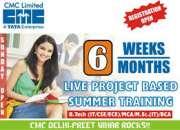 45 Days Summer Training in cmc noida/delhi