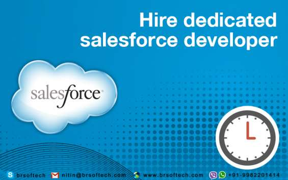 Hire dedicated sales force developer (india)