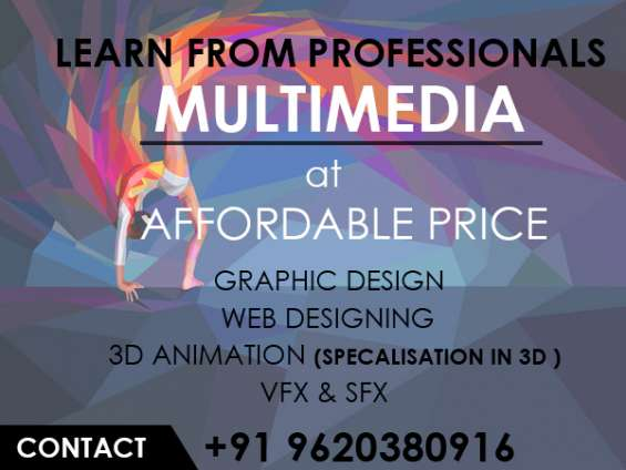Multimedia courses at very affordable fee structure