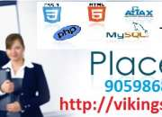 web site design ,development training with placements.