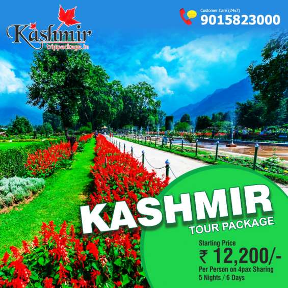 Kashmir tour package starting price rs 12000 for 5 nights / 6 days