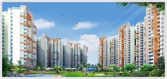 Amrapali spring meadows 1,2,3 bhk residential apartment