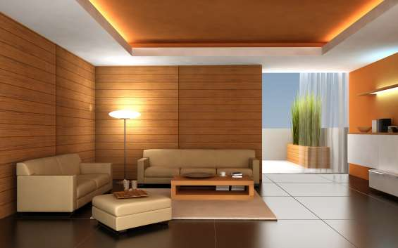 Ceilings and painting service
