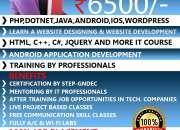 Web Training Institute In Ludhiana Punjab