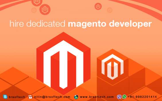 Dedicated magento developer (br softech pvt.ltd)
