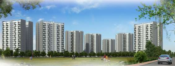 2 /3bhk apartments by amrapali kingswood in noida