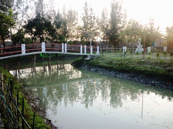Pictures of Sunderban tiger view point 7