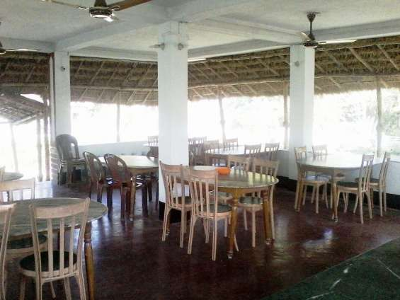 Pictures of Sunderban tiger view point 6