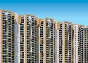 2 BHK Flats In Bollywood Style By Amrapali In Noida