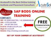 SAP BODS Online Training |Online SAP BODS | SAP BODS