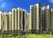 Amrapali Golf Homes 2/3BHK Apartments in Noida Extension Call@8882103588
