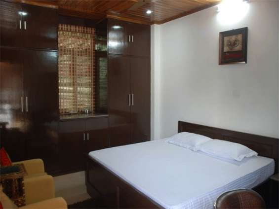 Pictures of Satya palace (holiday rental guest house in palam ext, new delhi) 4