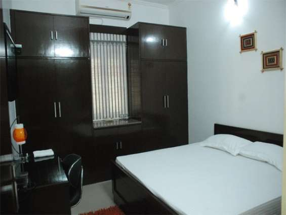 Pictures of Satya palace (holiday rental guest house in palam ext, new delhi) 2