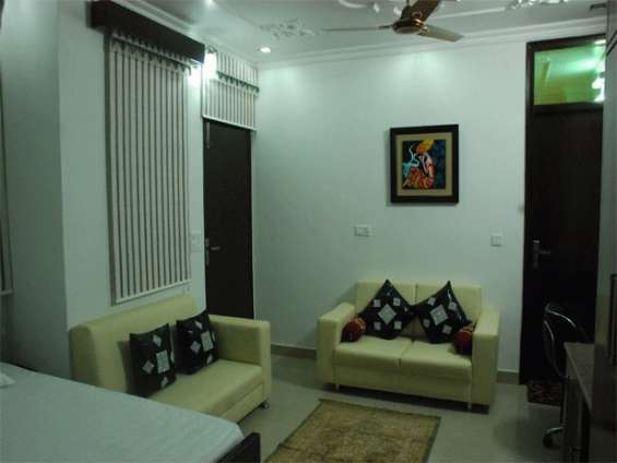 Pictures of Satya palace (holiday rental guest house in palam ext, new delhi) 1