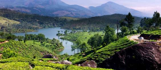 Munnar honeymoon tour packages, holiday packages munnar
