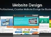web site design service company , web design and custom design