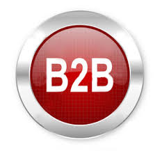 B2b web portal development company delhi ncr